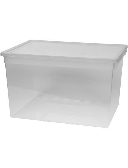 Aufbewahrungsbox 48 Liter Mit Deckel Standard Körbe Kisten